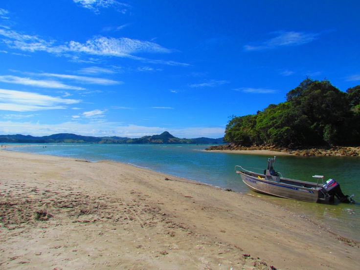 Cooks Beach, NZ. Photo by Sophia Egan-Reid.