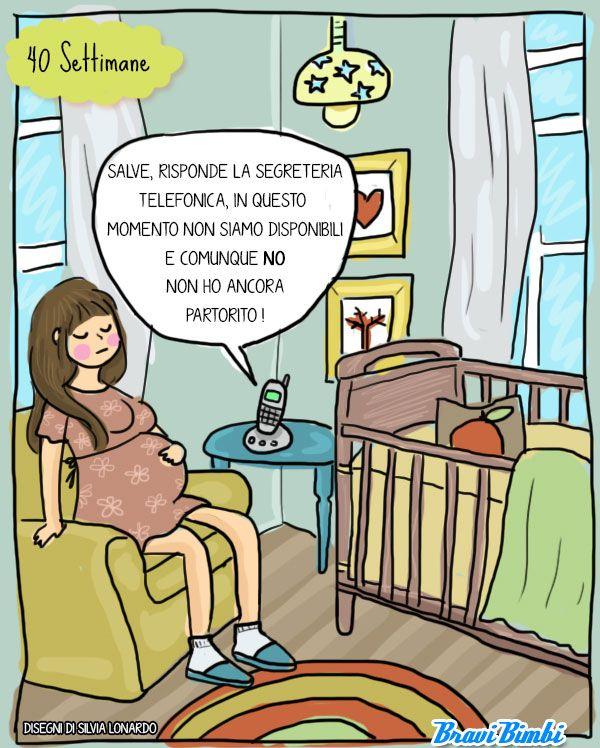 40 settimane di gravidanza, vignetta