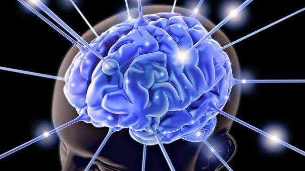 10 вещей, негативно влияющих на мозговую деятельность