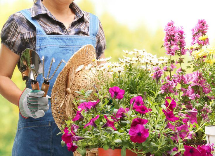 Trädgårdsarbete är lika bra som träning