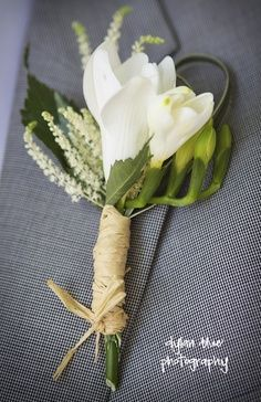 freesia boutonniere with astilbe - Google Search