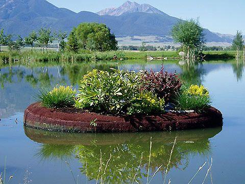 20 Best Floating Pond Islads Images On Pinterest Garden 400 x 300