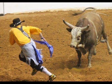 Salva Vidas de Rodeio ║ Estilo Livre ║ Bull Fighters Freestyle