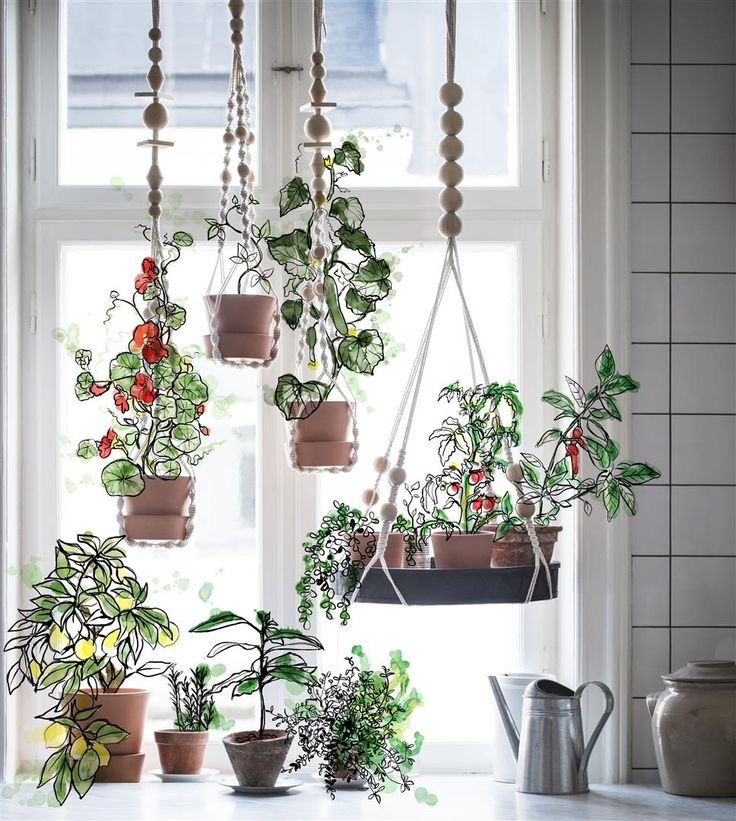 Hanging gardens, Babylonian style. Well, almost. Bring the outdoors indoors for that emerald forest feeling, with ANVÄNDBAR net and tray hanging. Enjoy greenery. Keep surfaces clear. And start to live a little kinder. #Livealittlekinder #IKEAcollections #ANVÄNDBAR #IKEA #greenhomes #hangingflowers