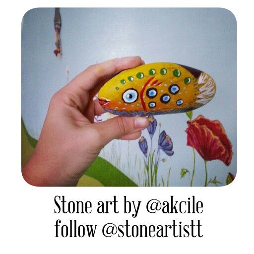 Rockpainting fish..awesome underwater world. .@stoneartistt @akcile