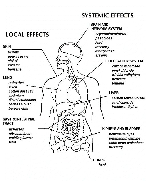 effects of water pollution on human health