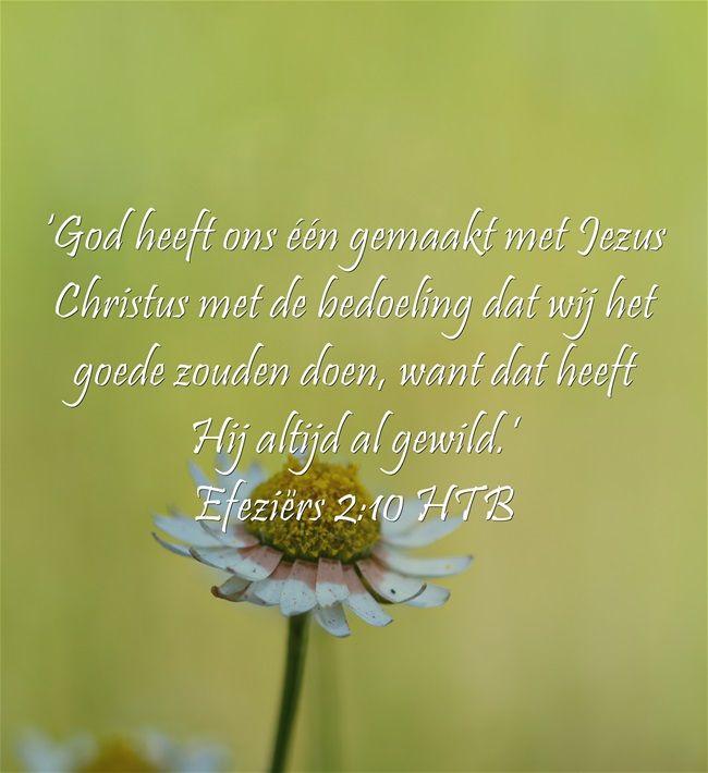 'God heeft ons één gemaakt met Jezus Christus met de bedoeling dat wij het goede zouden doen, want dat heeft Hij altijd al gewild.' Efeziërs 2:10 HTB