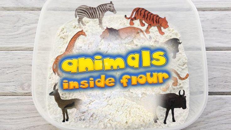 Find Animal Toys Inside White Flour For Kids حيوانات داخل الطحين A Pet Toys White Flour Toys