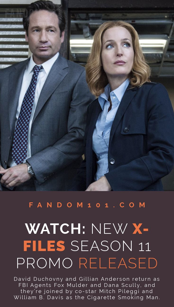 FOX has released The X-Files Season 11 promo!In 2018, David Duchovny and Gillian Anderson return as FBI Agents Fox Mulder and Dana Scully, and they're joined by co-star Mitch Pileggi as FBI Assistant Director Walter Skinner and William B. Davis as the Cigarette Smoking Man.