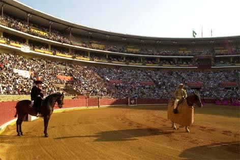 ACTUALIDAD Este domingo 12 de mayo Tentadero didáctico en la plaza de Córdoba - Mundotoro.com #toros #Cordoba