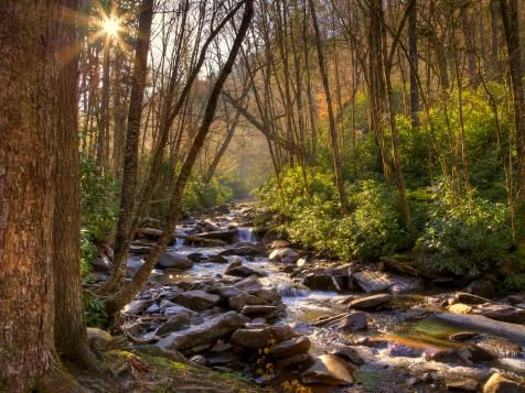 Great Smoky Mountains : 8 Astonishing Family Mountain Vacations : TravelChannel.com
