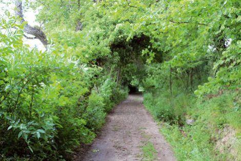 Une randonnée bucolique au départ de Schweighouse