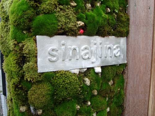 The last thing you'd expect on a quiet residential street in a posh Tokyo neighborhood is a subversive shop. But behind Sinajina's mossy, manicured sign, bonsai artist Kenji Kobayashi is selling a radical idea along with his tiny trees.