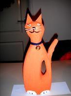 Surprise kat van wasmiddelfles