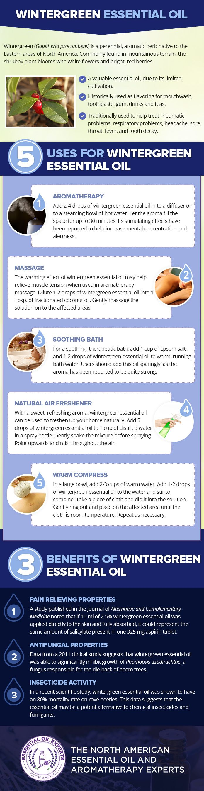 Wintergreen Essential Oil Uses & Benefits