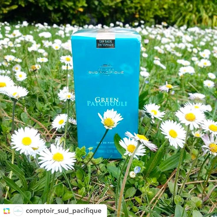 #GPRepost,#reposter,#notetag @comptoir_sud_pacifique via @GPRepostApp ======> @comptoir_sud_pacifique:#greenpatchouli a perfect #unisex #fragrance for #spring ! #comptoirsudpacifique  #edp #perfume #profumo #paris #comptoirsudpacifiqueboutique #aromatic #greenscents #mint #lavander #patchouli Green Patchouli Comptoir Sud Pacifique - это аромат для мужчин и женщин, принадлежит к группе ароматов . Это новый аромат, Green Patchouli выпущен в 2016. Верхние ноты: Бергамот и Мята; ноты сердца…