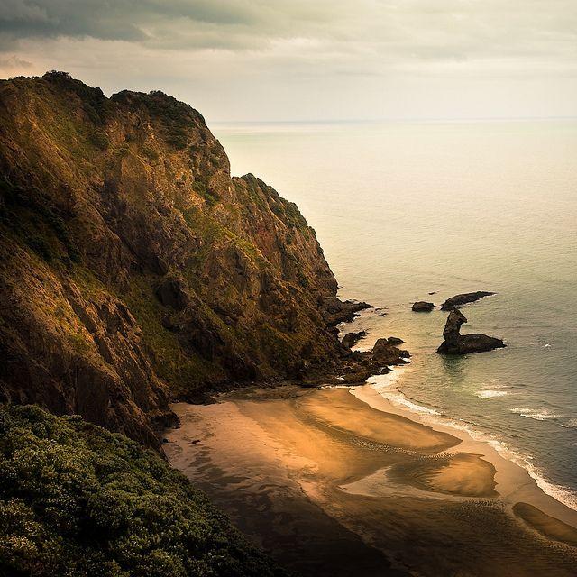 My favorite beach <3 Piha, New Zealand