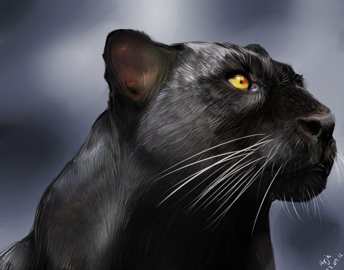Black Panther By Portela On Deviantart: Black Panther By Ariis.deviantart.com On @deviantART