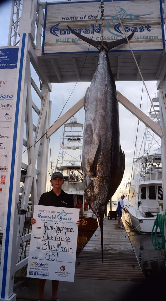 Blue Marlin Classic: Two pounds separates first, second place - Sports - Northwest Florida Daily News - Fort Walton Beach, FL