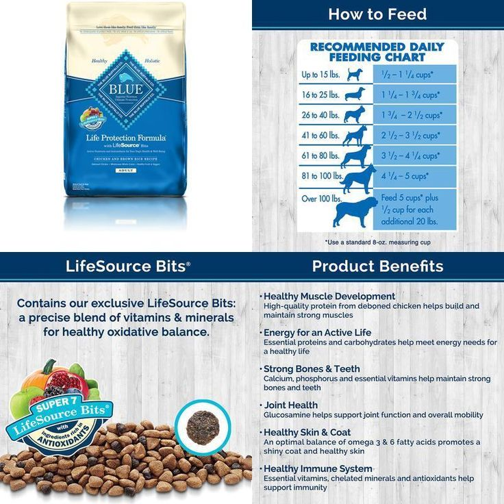 Dog Food Dry Adult Chicken &Amp; Brown Rice Recipe 30 Lb Bag Delicious Protein #BlueBuffalo,#dog,#food,#cat,#energy,#strong,#health,#dry,#pet,#protein,#natural