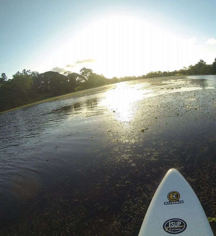 Sunday afternoon paddle boarding in Townsville