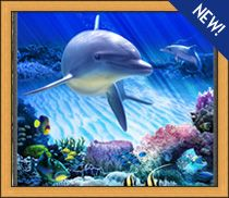 Dolphin Reef Stained Glass Art