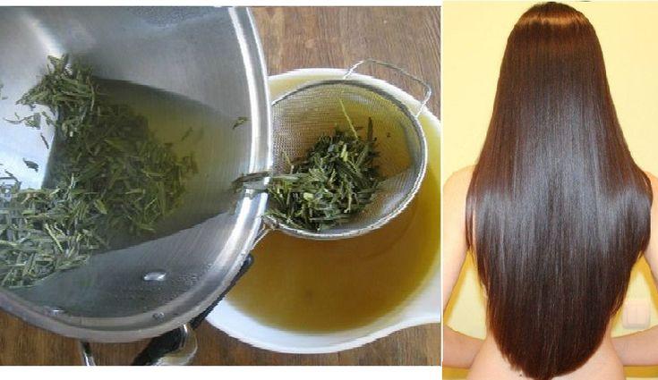 Rozmaryn to nie tylko świetna przyprawa ale też świetna roślina o właściwościach leczniczych. Mało osób wie o tym, że to zioło stymuluje porost włosów. Nasze włosy rosną szybciej dzięki rozmarynowi, ponieważ stymuluje krążenie krwi u podstawy włosa (przy cebulkach), co z kolei przyspiesza wzrost włosa. Jeżeli będziesz systematycznie pielęgnować włosy tą płukanką, Twoje włosy staną się błyszczące i jedwabiście gładkie, ale to nie jedyny plus takiej terapii. Dodatkowo pozbędziesz się szeregu…