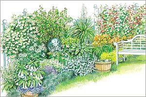 Design for a Moon Garden