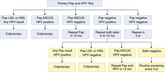 Management algorithm for women with combinations of test results from combined HPV and Pap testing.