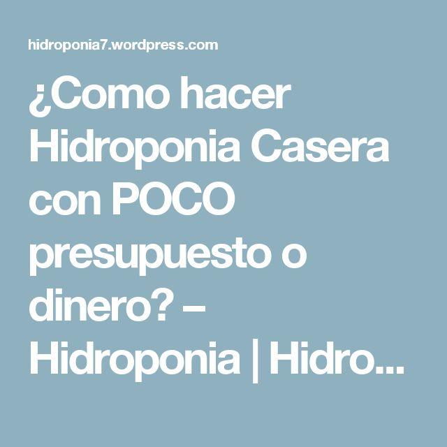 ¿Como hacer Hidroponia Casera con POCO presupuesto o dinero? – Hidroponia   Hidroponia Casera