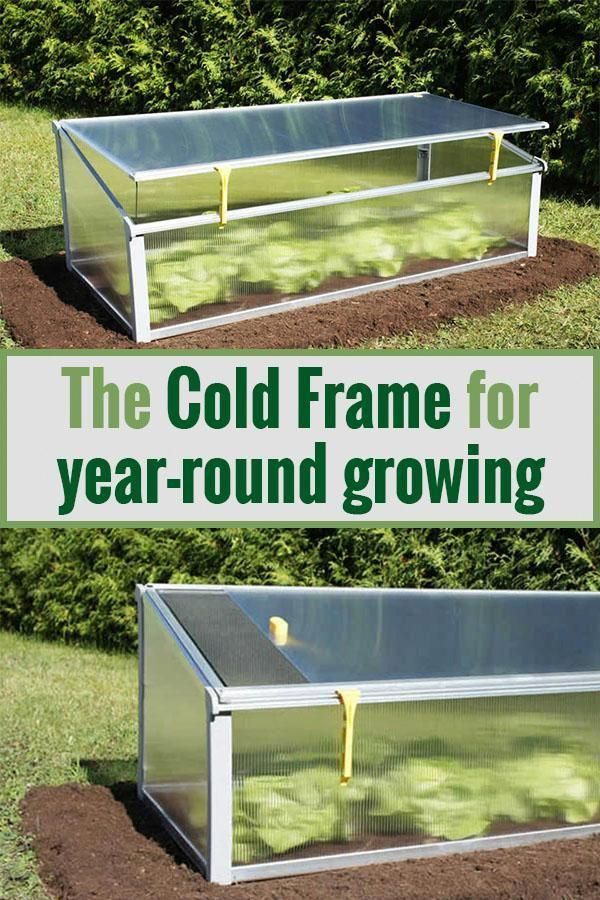 Juwel Year Round Cold Frame 4ft X 2ft Homesteading