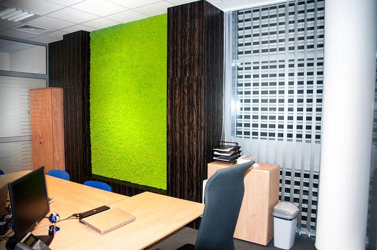 Realizacja w Warszawie - biuro ozdobione Mchem Premium - kolor zielone jabłko.
