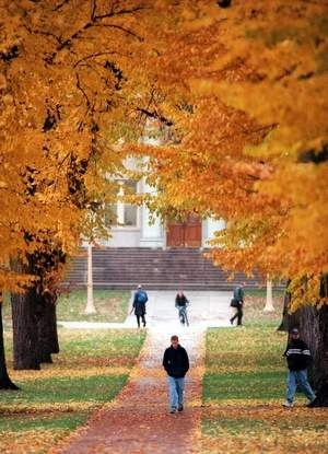 "CSU Named ""Must-See"" Campus in Fall--A canopy of fall colors towers at Colorado State University's Oval Monday. The sleet and cold has brought down the leaves of many of the elm trees -- many as old as 120 years. Rich Abrahamson / The Coloradoan"