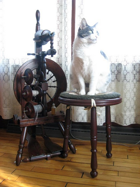 Back to the (spinning) Wheel