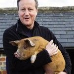 David Cameron Accused of Sex Act With a Dead Pig