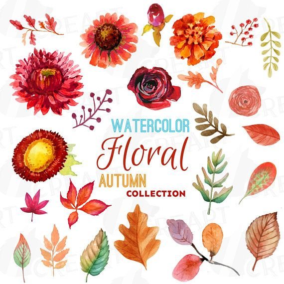autumn fowers and leafs clip art pack watercolor floral clip | etsy | floral  watercolor, clip art, fall flowers  pinterest