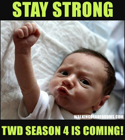The Walking Dead Memes: Books Jackets, Stay Strong, Mondays, Funny Pictures, Funnypictures, The Weekend, Funny Baby, Coming Soon, Staystrong