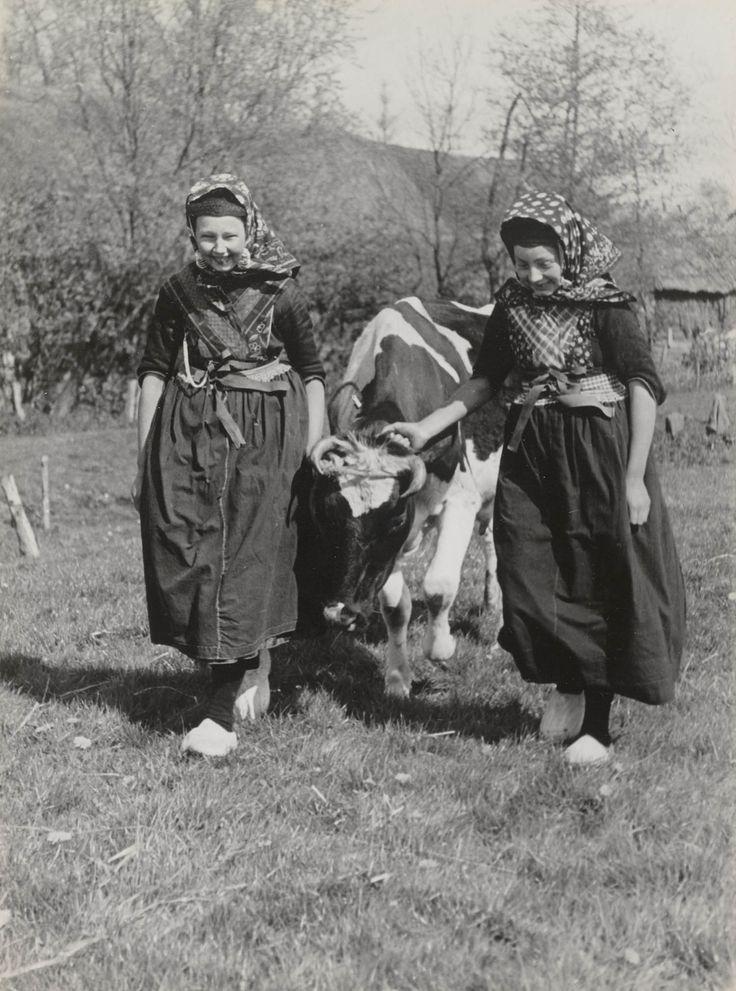 Twee jonge vrouwen uit Rouveen, met een koe. De linker vrouw draagt een zilveren ketting met zakhorloge. Dit werd alleen doordeweeks gedragen. Het horloge zat op een opgenaaid zakje op de borstrok onder de kraplap. Het uiteinde van de ketting werd vastgemaakt aan een op de borstrok genaaid oog of aan een sluitband van de kraplap. 1944 #Overijssel #Staphorst