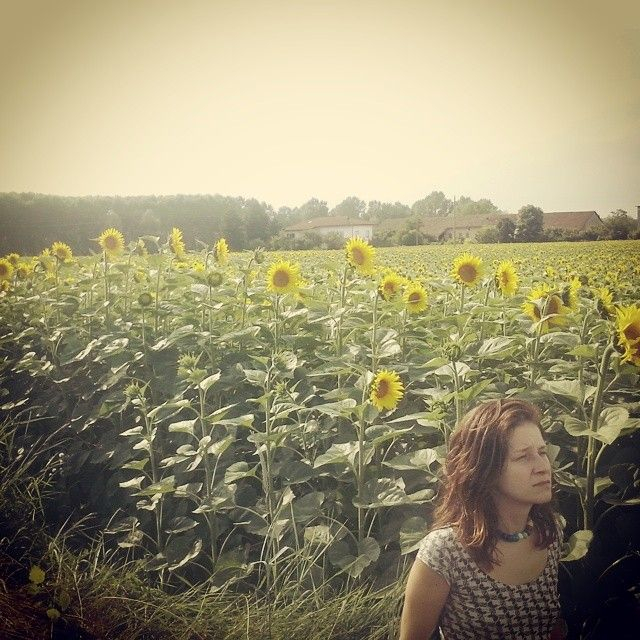 Lo sai che i girasoli son alti alti alti... #estate #campagna #happiness