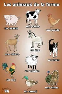 Poster - Les animaux de la ferme - Little Linguist