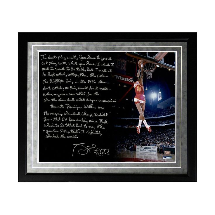 "Steiner Sports Atlanta Hawks Spud Webb Slam Dunk Contest Facsimile 16"" x 20"" Framed Metallic Story Photo, Multicolor"