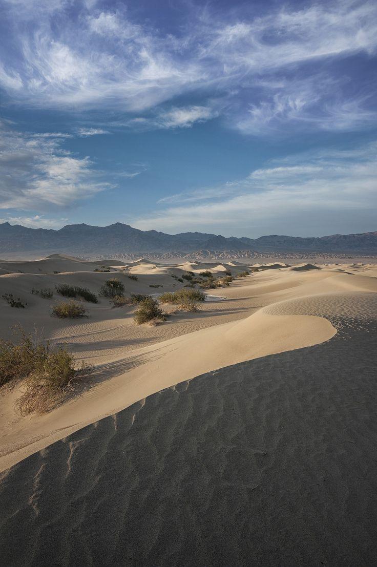 96 best The Mojave Desert images on Pinterest | Mojave desert ...