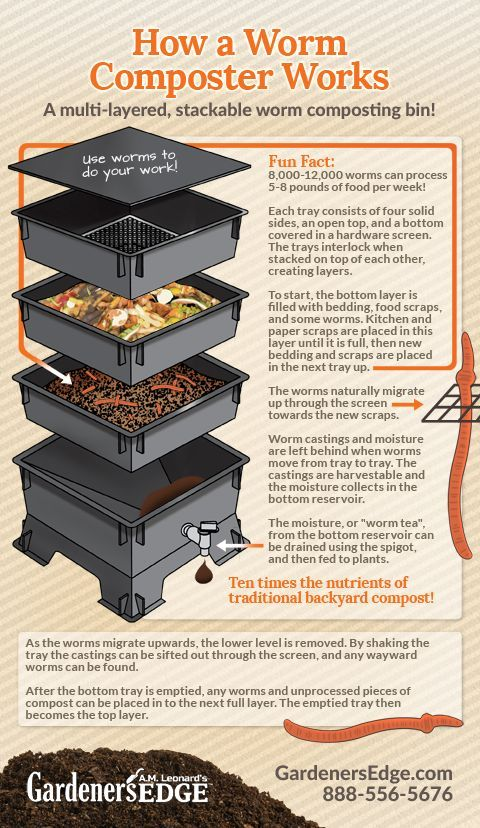 Gardening Tips: How worm composting works! A Worm Compost Bin accelerates the composting process through activity by the worms, and it is easy to manage. The Worm Factory is designed to support all of the benefits or worm composting!  |  GardenersEdge.com