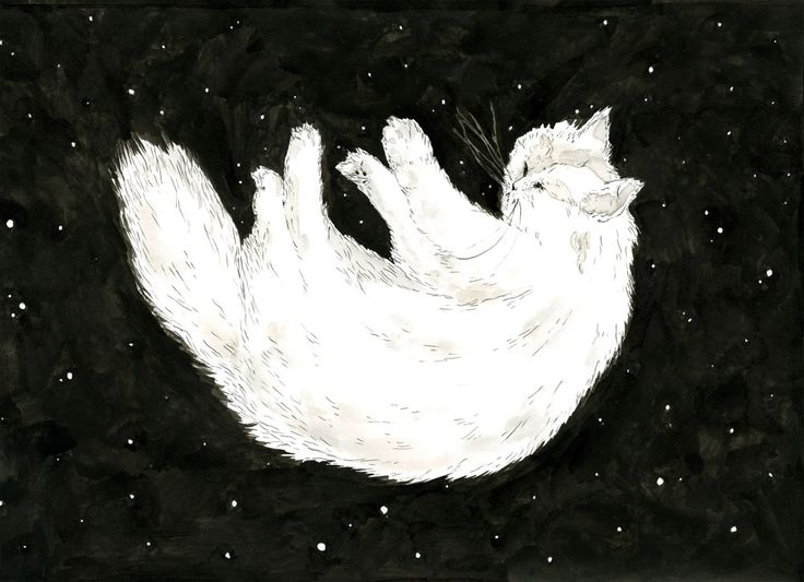 Illustration Cat in Space Sylvia Stølan