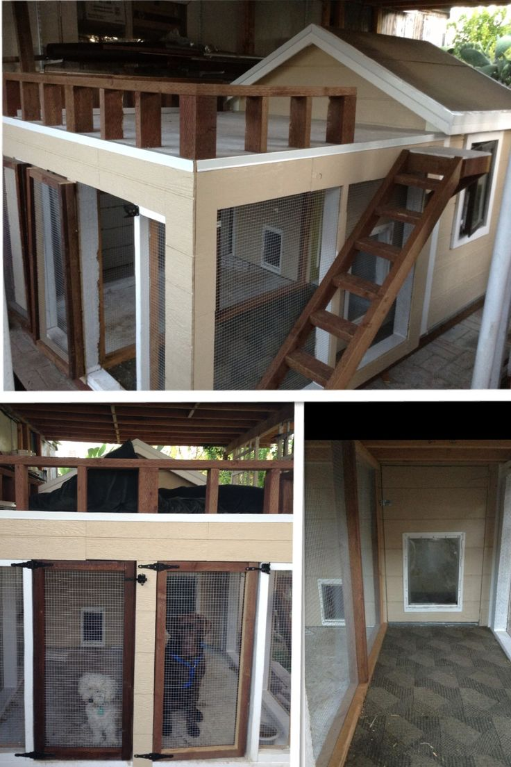 17 best images about dog house dog run on pinterest for 2 door dog house