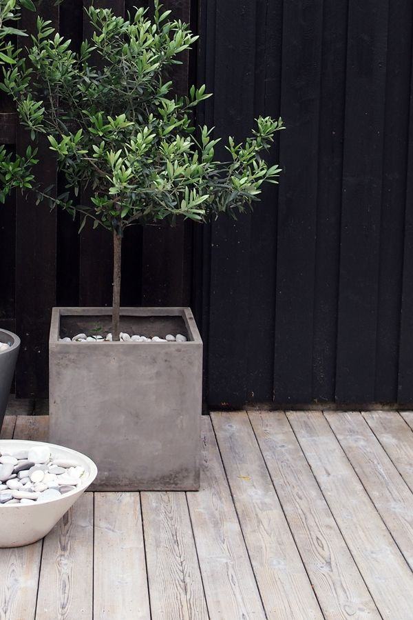 Rectangular concrete flower pot, black house and wood terrace. Love!