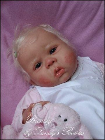 Авторские силиконовые куклы мастера Сэнди Фабер (Sandy Faber)