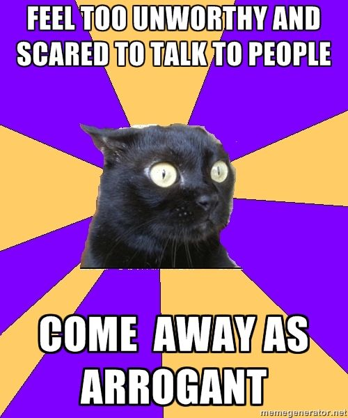 Don't like the cat, the colors or the phrasing, but the sentiment... this is me.