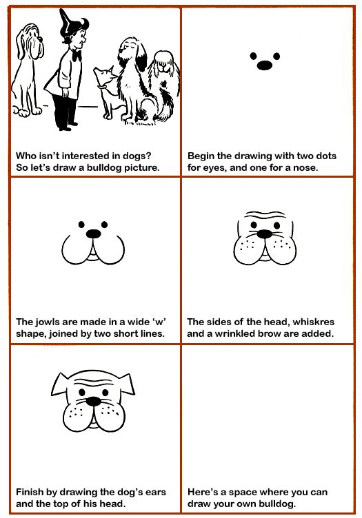 how to draw a bulldog easy