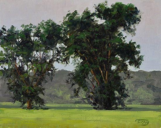 Tree Study, Clinton MO by Tim Breaux Oil ~ 8 x 10